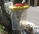 מלכודת זבובים חד פעמית